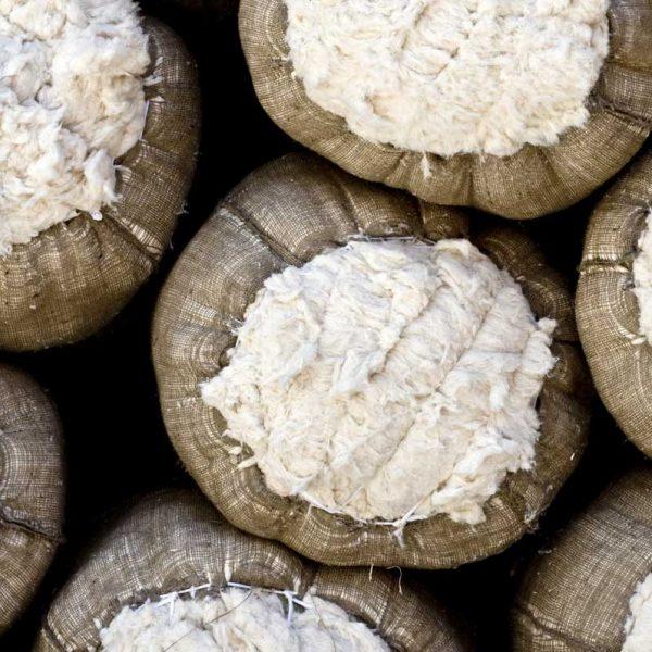 cotton_bales